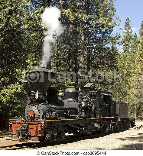 Steam Locomotive - csp3695444