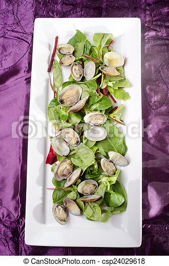 steamed clams with salad on a plate - csp24029618