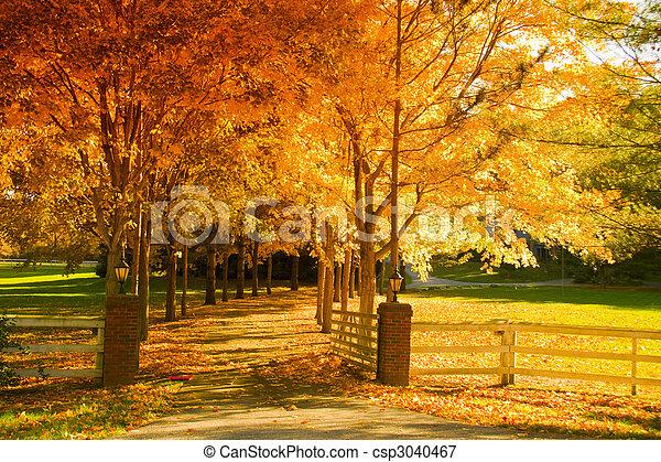 steegje, herfst - csp3040467