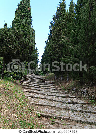 steep stone avenue to the shrine of St. Margaret of Cortona - csp9207597