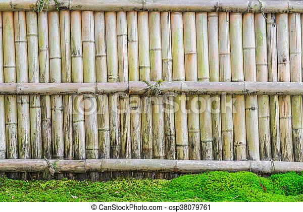 Zaun Bambus stein, grüne blätter, zaun, bambus.
