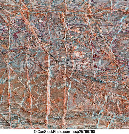 stein - csp25766790