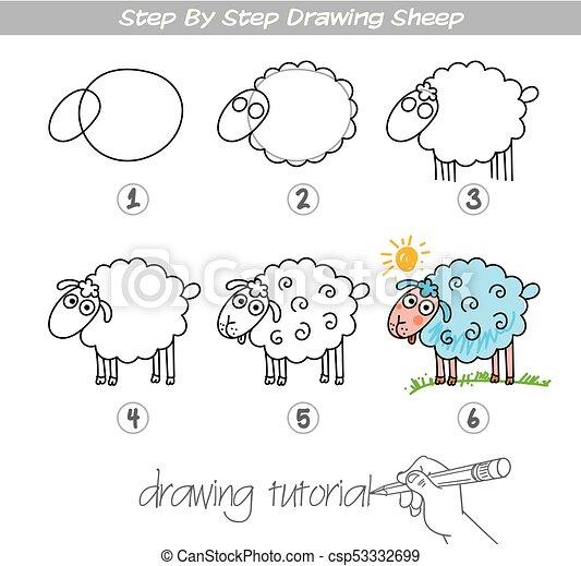 Step by step drawing Sheep - csp53332699