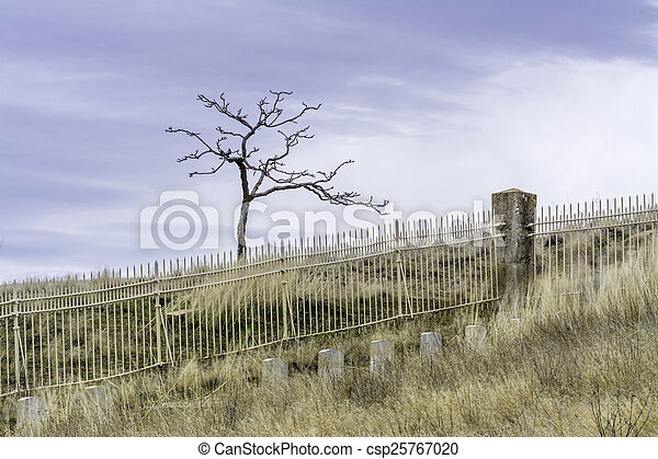 sterile, solitario, cimitero, calma - csp25767020
