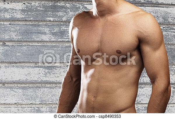 sterke, torso - csp8490353