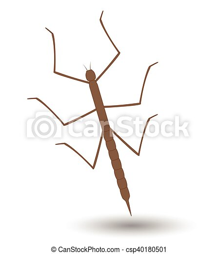 Water strider Illustrations and Stock Art. 28 Water strider ...