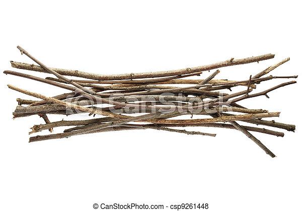 Sticks And Twigs Wood Bundle Stock Photo
