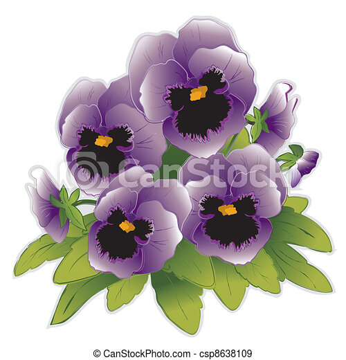 stiefmütterchen, blumen, lavendel - csp8638109