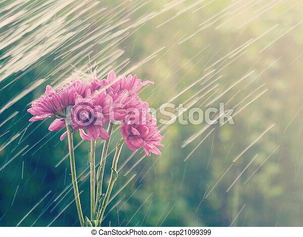 stil, gammal, årgång, regna, retro blommar - csp21099399