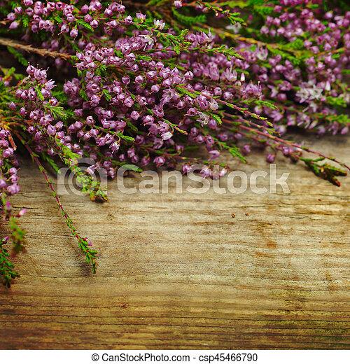 stil, gammal, trä, årgång, bakgrund, blomningen - csp45466790
