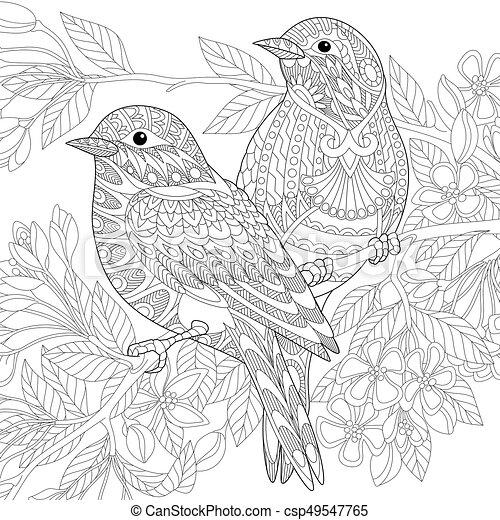 Stilisiert, zentangle, vögel, haussperling. Skizze, färbung ...
