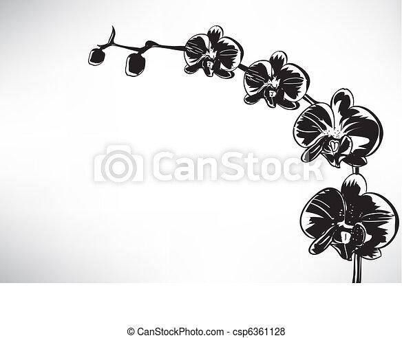 stilizzato, orchidea - csp6361128