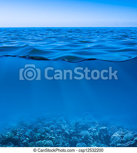 still calm sea water surface with clear sky and underwater world discovered - csp12532200
