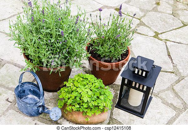 Still life in a garden - csp12415108