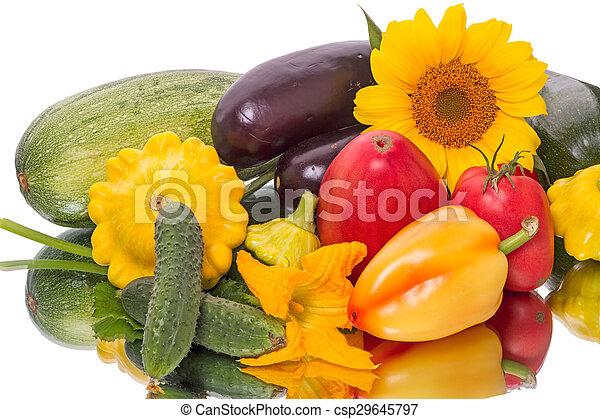 Still life of vegetables on white  - csp29645797