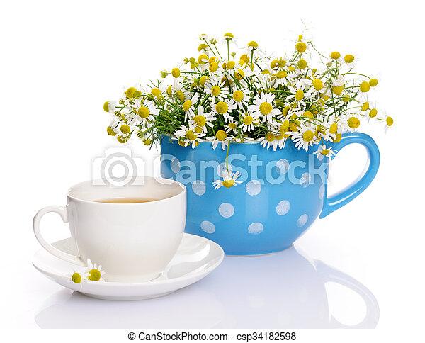 Still life with chamomile - csp34182598