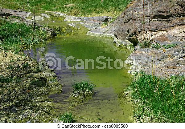 Still Pond 4573 - csp0003500