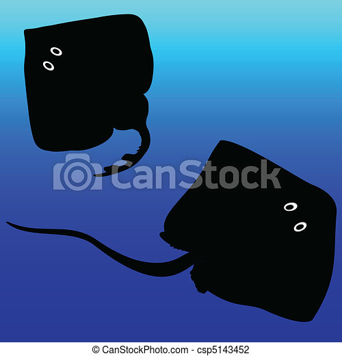 stingray vector silhouettes - csp5143452