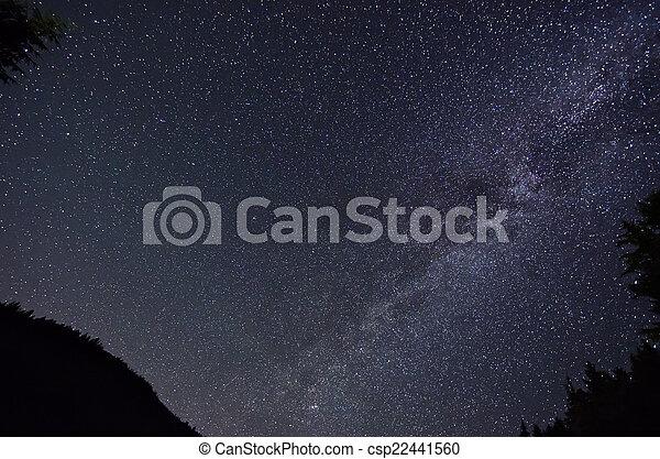 stjärna, sky - csp22441560
