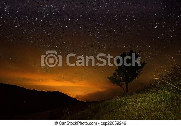 stjärna, sky - csp22059246