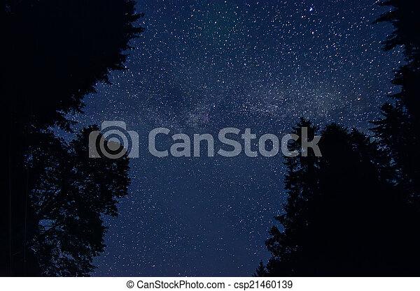 stjärna, sky - csp21460139