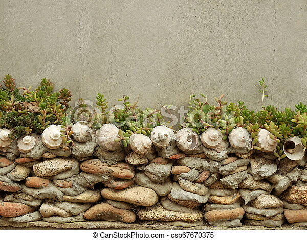 Stone and Shell Wall with Succulents - csp67670375