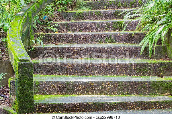Stone Stair Covered With Moss In Thai Public Park   Csp22996710
