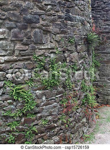 stone wall detail - csp15726159