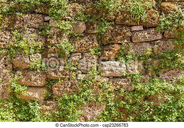 Stone Wall - csp23266783