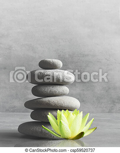 Stones Balance Zen And Spa Concept Stones Balance White Flower