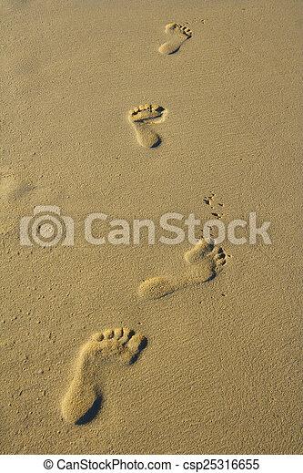 stopa nadrukowuje - csp25316655