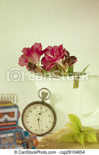 stopwatch and flowers in a cup still life