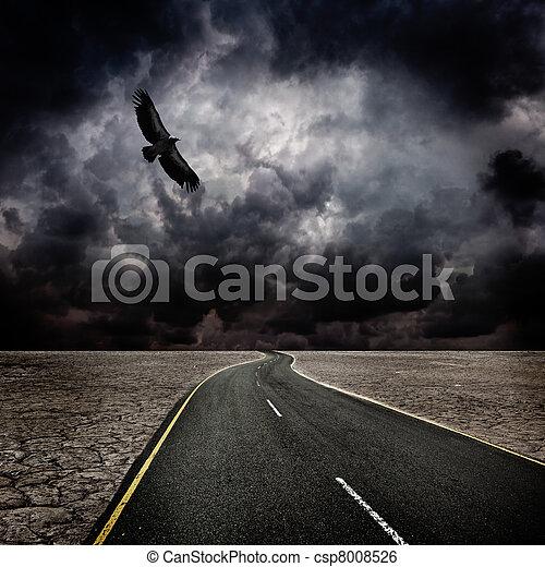 Storm, bird, road in desert - csp8008526