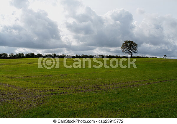Storm clouds over a field - csp23915772