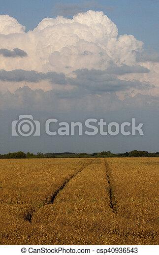 Storm Clouds Saskatchewan - csp40936543