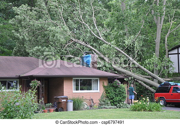 Storm damage - csp6797491
