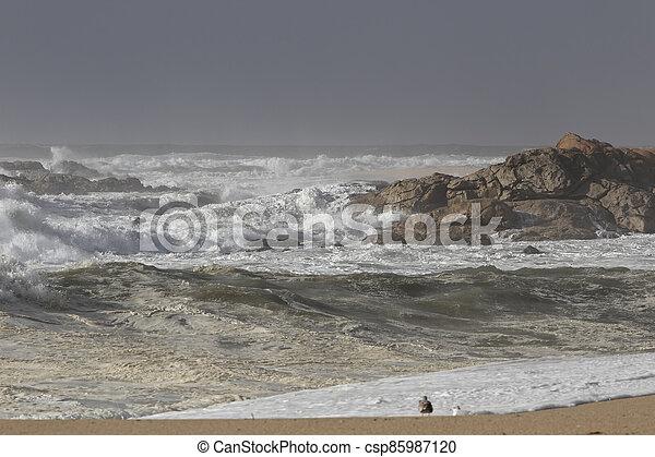 Storm on the beach - csp85987120