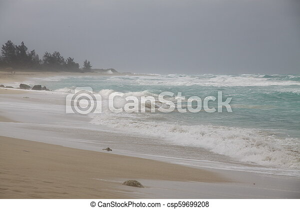 Storm on the beach - csp59699208