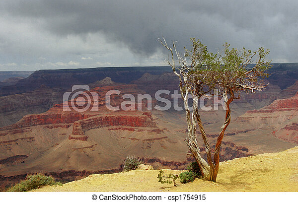 Stormy Grand Canyon - csp1754915