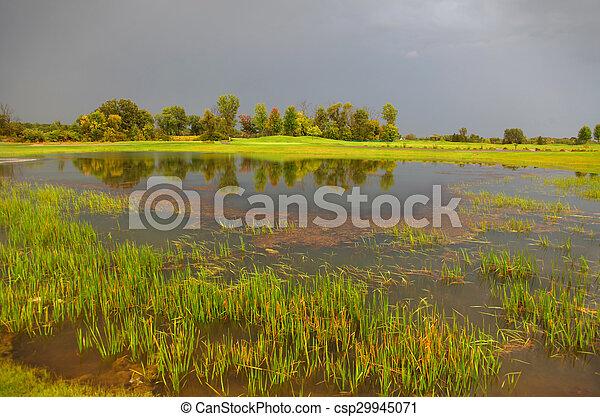 Stormy weather - csp29945071