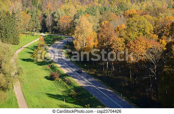strada, foresta - csp23704426