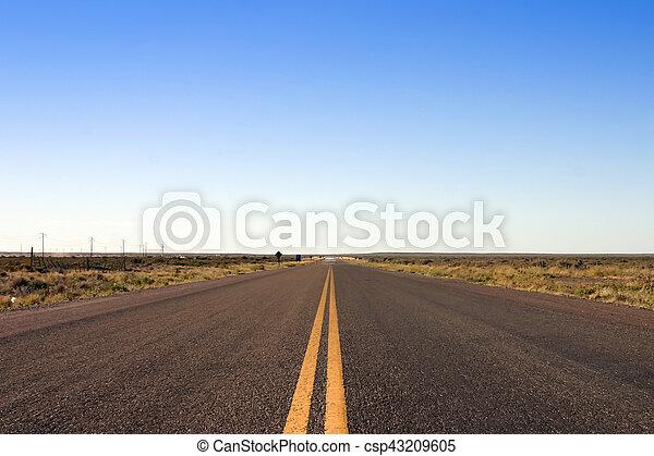Straight road in Peninsula de Valdez, Patagonia, Argentina - csp43209605