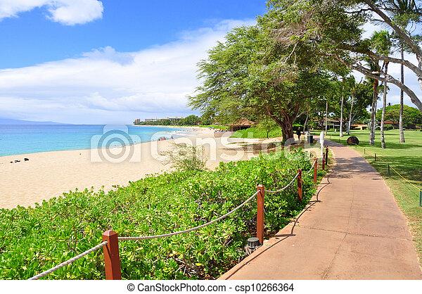 strandpromenade, kaanapali strand - csp10266364
