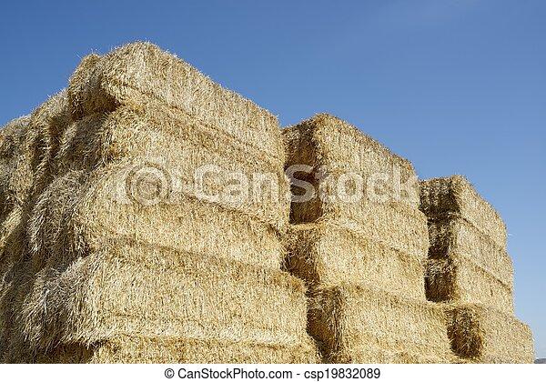 Straw bales - csp19832089