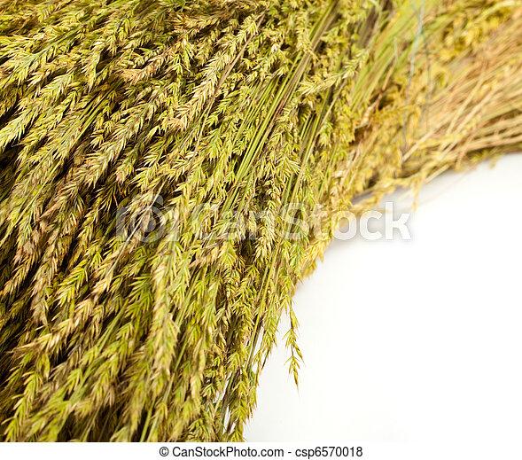 straw - csp6570018