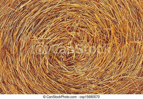 Straw Texture - csp15680570