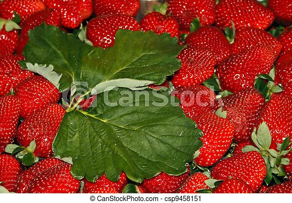 Strawberries 2 - csp9458151