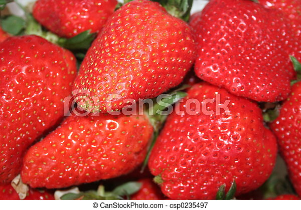 strawberries IV - csp0235497