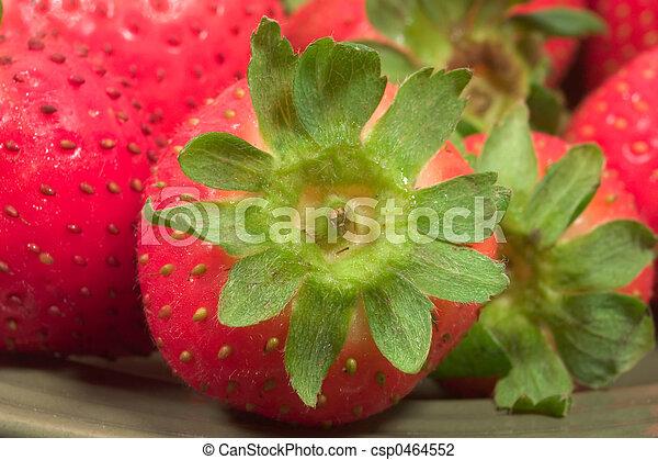 strawberry macro - csp0464552
