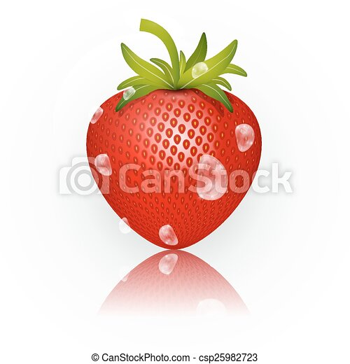 Strawberry Vector Illustration Isolated on White Background - csp25982723